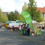 stand issel