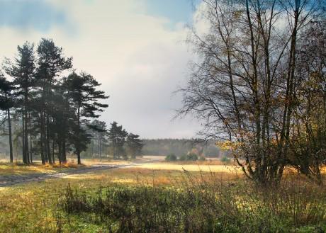 Senne im Herbst, Autor: Nikater