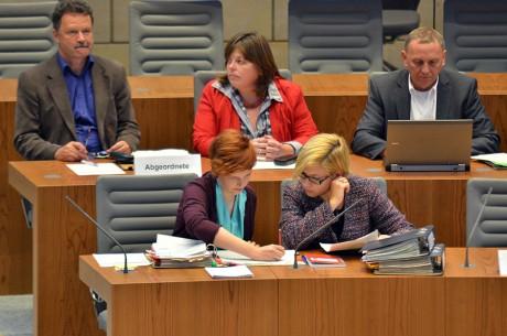 Wibke Brems bei der Anhörung zum Klimaschutzgesetz
